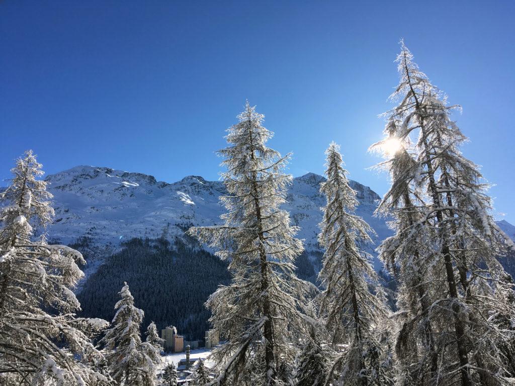 Sankt Moritz sunshine