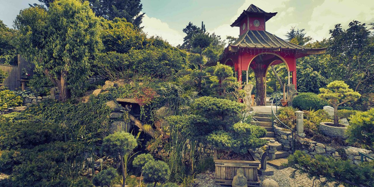 Wonderland of Garden Fantasies