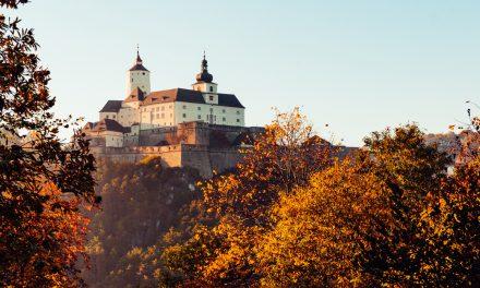 Happy Birthday Burgenland